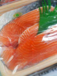 幻の高級魚<サクラマス>